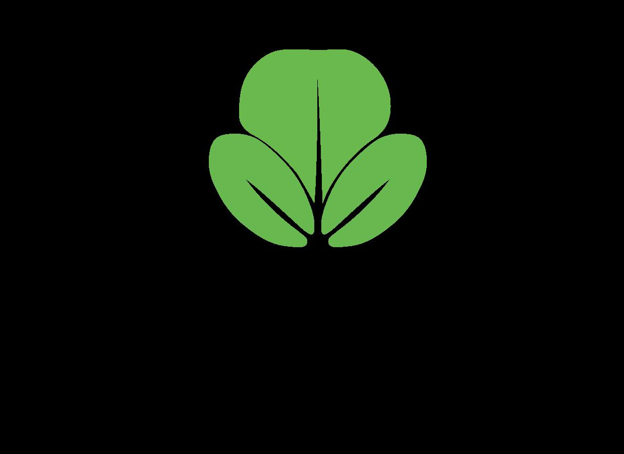 Bio Green Invest